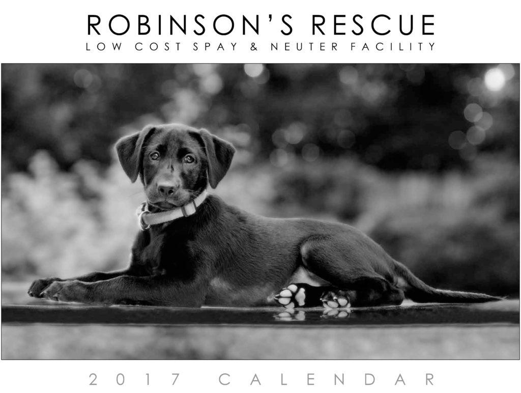 2017 Calendar Cover Photo